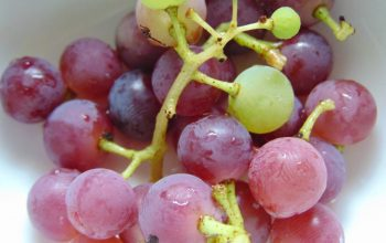 Mars Seedless Grapes Update