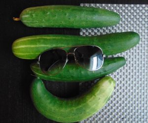 Happy Cucumbers